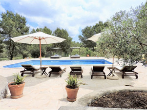 Holiday villa Ribas 10 Ibiza