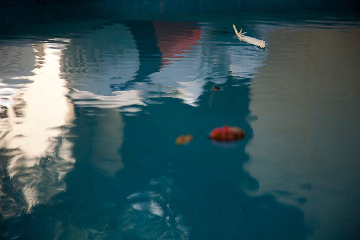 ©Sara Musashi, Narcissus