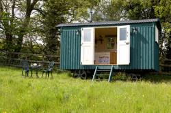 hut31