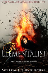 the elementalist a book by author melissa j. cunningham