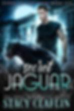 Secret Jaguar.jpg