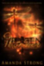 hidden monster a novel by author amanda strong