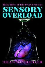 Sensory Overload.jpg
