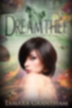 dream thief a novel by author tamara grantham