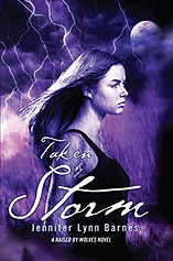 into the storm jennifer lynn barnes