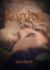 burden by lila felix a bayou bear chronicle