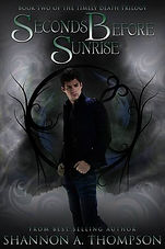 seconds before sunrise a book by author shannon a. thompson