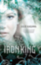 the iron king a novel by author julie kagawa