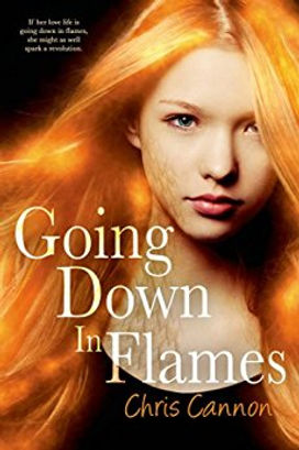 going down in flames by chris cannon