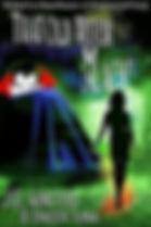 spirit storm a book by author e.j. stevens