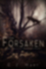 The forsaken book 2 in the abandonded series by Author C.J. Hart