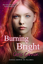 Burning Bright.jpg