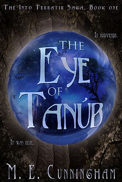 the eye of tanub a novel by author m.e. cunningham