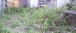 雑草の処理 お庭の片付けのご依頼