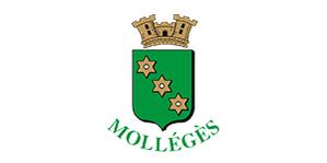 client IDP360 - commune de mollégès.png