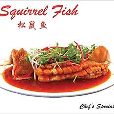 Squirrel (Crucian) Fish (松鼠鱼)