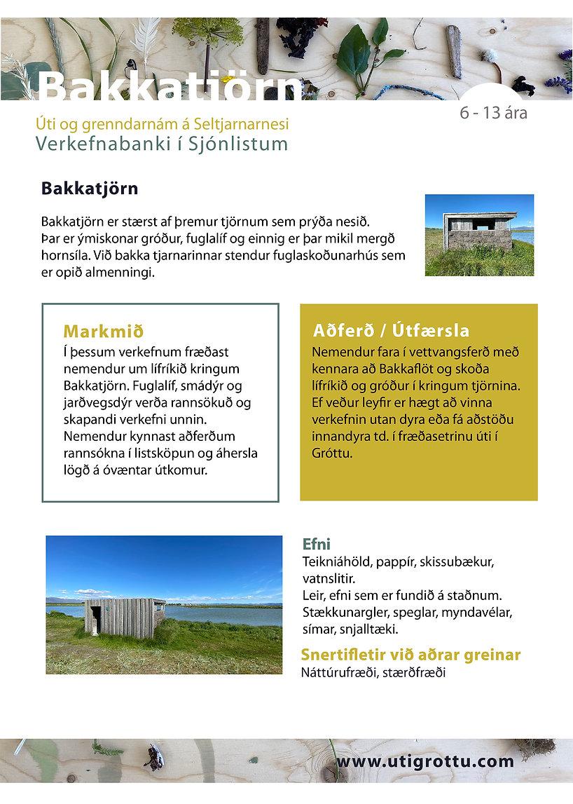 Bakkatjörn-01.jpg