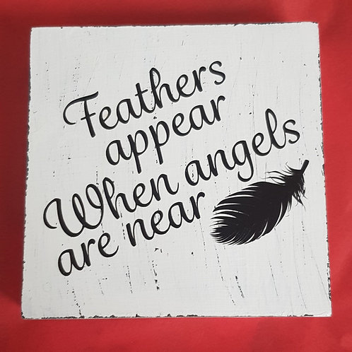 Feathers appear Wooden Plaque