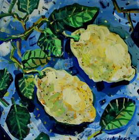 Due limoni di Sicilia.