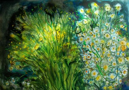 L'erbe e fiori del campo.