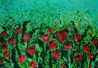 Il campo dei tulipani.