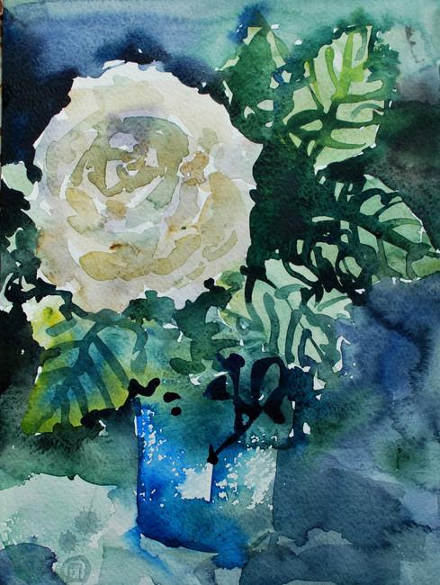 Prima rosa bianca.