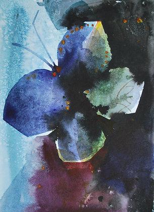 La farfalla blu