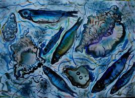 Pesce azzurro , perle e conchiglie.
