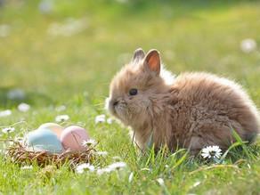 Pour Pâques, un traiteur peut vous éviter des soucis pour votre repas de fête