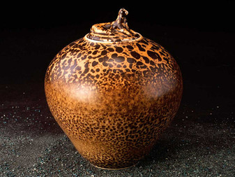 Ceramic's nature