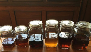 Herbal tinctures - natural wellbeing