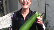 What do zucchini and personal wellbeing have in common?
