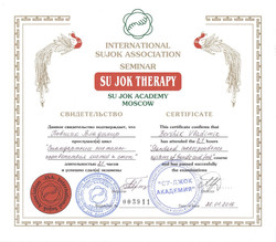 Сертификат Су-джок Бовшик Владимир 001