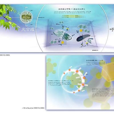 JT生命誌研究所 展示計画+グラフィック