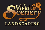 VIVID SCENERY.png