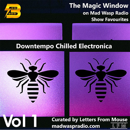 The Magic Window on Mad Wasp Radio - Show Favourites Vol 1