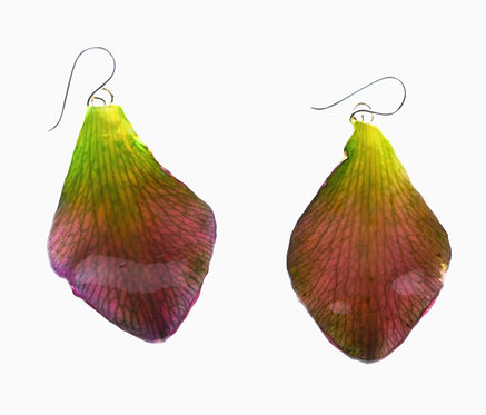 Green Dendrobium Petal Earrings