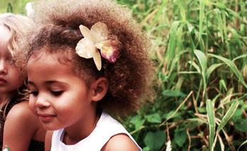 Orchid Treasures Australia Hair Clip