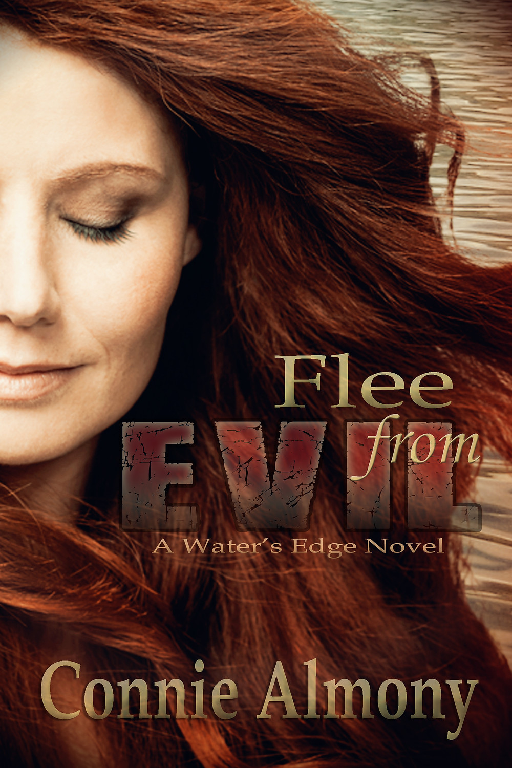Flee from Evil: Inspirational Christian Romantic Suspense Novel