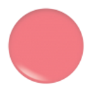 Disco Gloss