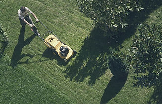 Man mowing the lawn with yellow lanwn mower