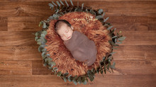 Estilo Newborn, uma fotografia artística...
