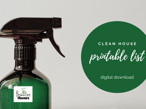 Clean House Printable
