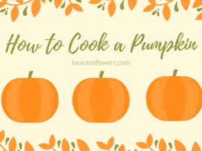 Watch Party Thursday - how to cook a pumpkin