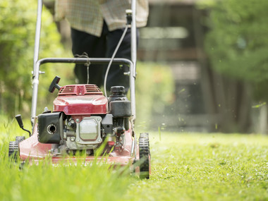 Book for a Lawn Mowing service from NexDo