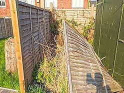fence-repair.jpg