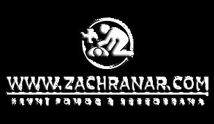 Tranparent logo2.png