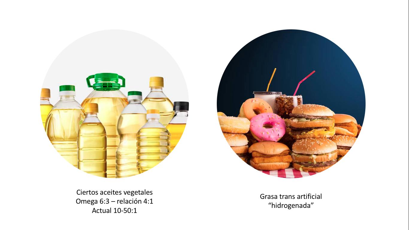 5 Aceites altos omega 6 y trans