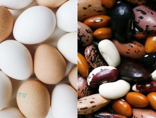 ¿La proteína vegetal y animal nutren igual?