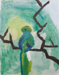 Le perroquet